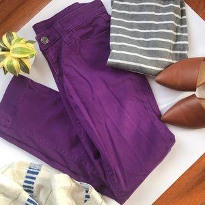 GAP Purple Pants